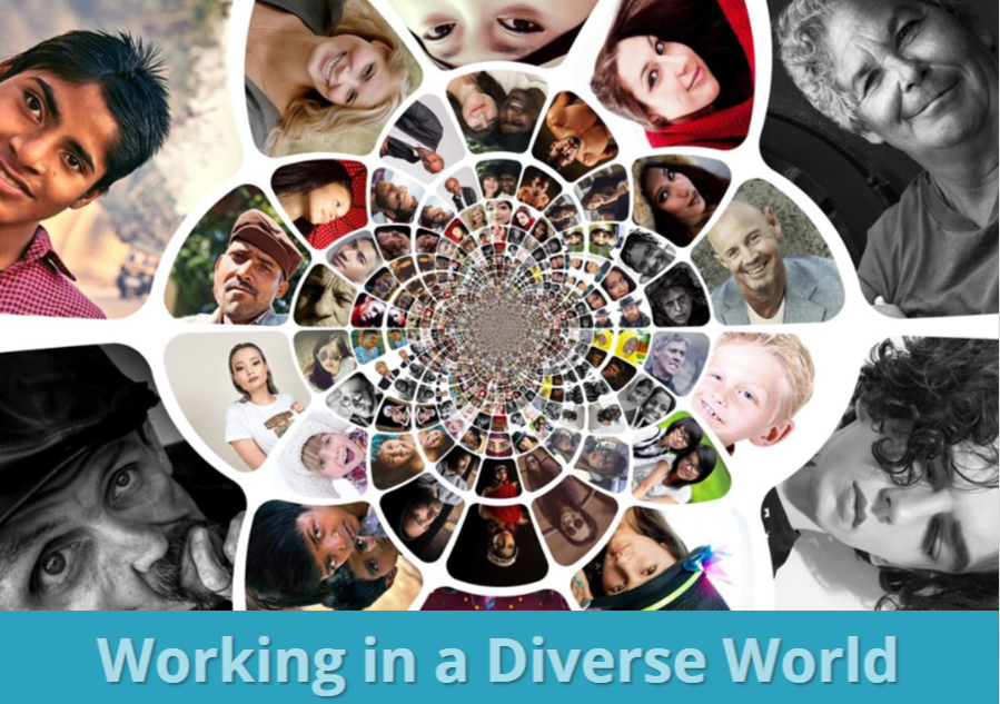 Working in a Diverse World (CE026_CRN60446)