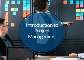 Introduction to Project Management (CE990_CRN60438)